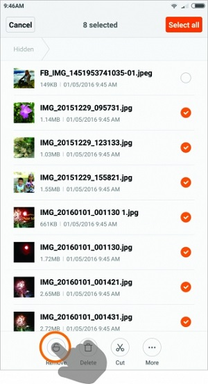 MIUI: How to unhide/remove files from the Hidden folder in