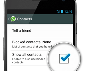 WhatsApp show all contact
